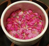 寒緋桜の花びらを水に浮かせてみました
