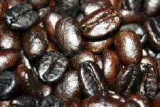 おっちゃんの焼いた珈琲豆「コロンビア・ピコクリストバル」