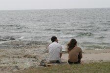 うしろ姿w、野間海岸にて。 kaze撮影