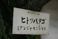 名前札~♪