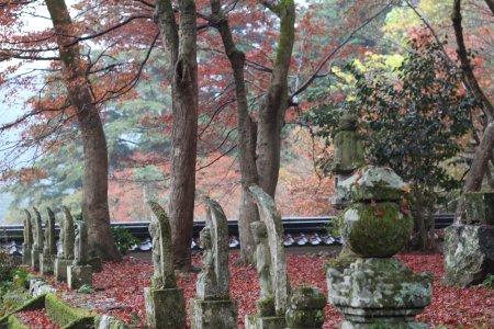 丹波 円通寺